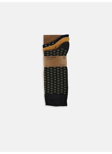LC Waikiki Çorap Seti Renkli